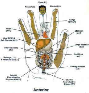 Reflex-Hand