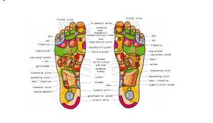 REFLEXOLOGY MAPS