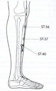 Point ST-36