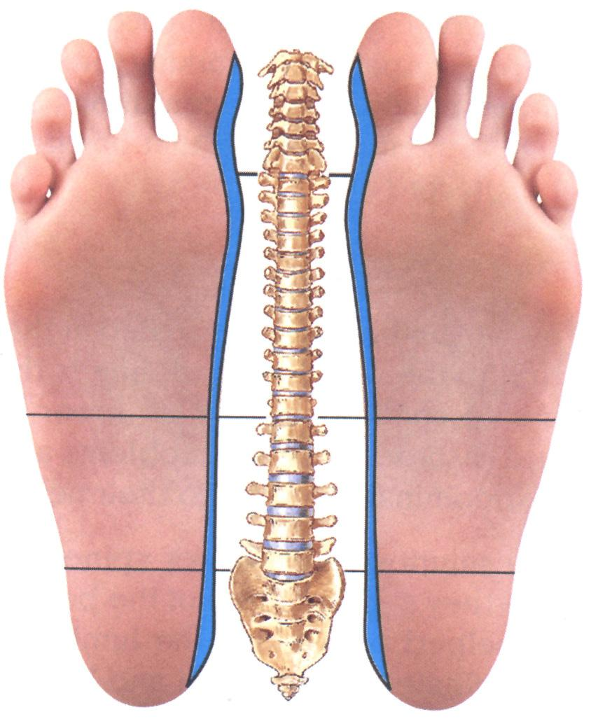 Foot massage relieves back pain 14