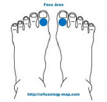 reflexology for migraines Face Area